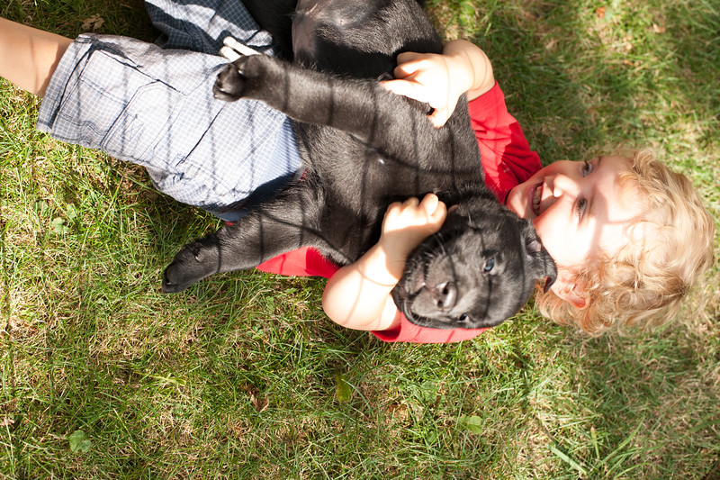 Jes bday and puppies-32.JPG