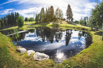 WRC Rally Finland 2016