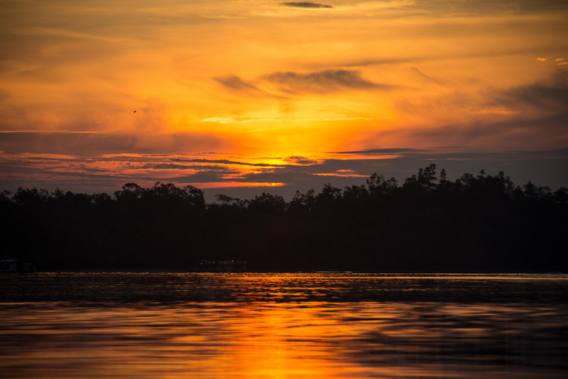 Borneo-2014-222.jpg