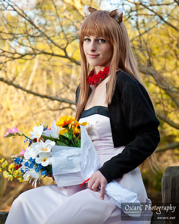 Horo (Katsumiyo) from Spice and Wolf