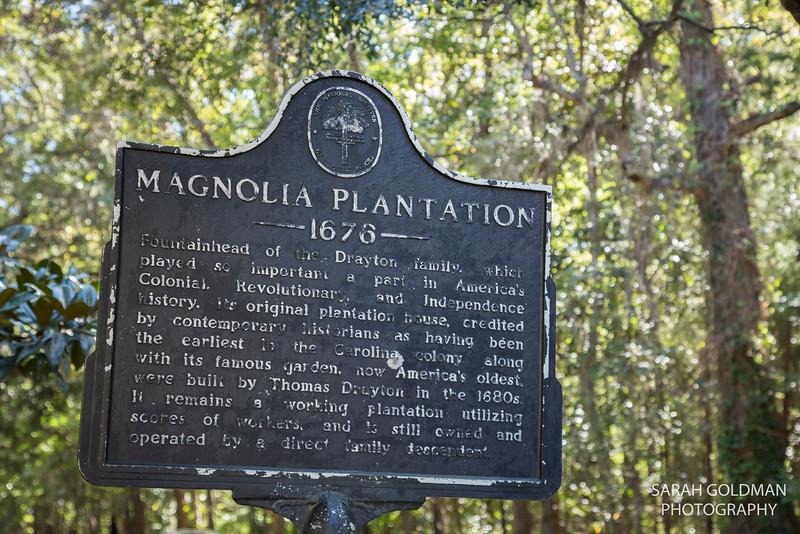 MagnoliaPlantation-wedding (2).jpg