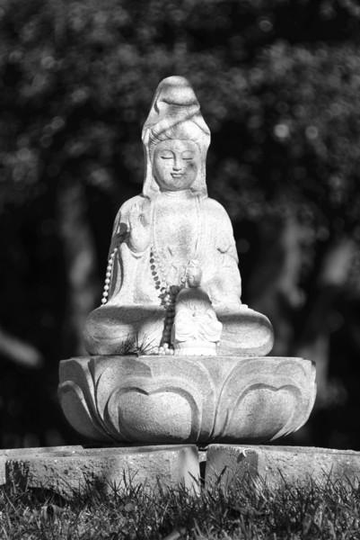 20131201-d6-Jampa Rinpoche-0335.jpg