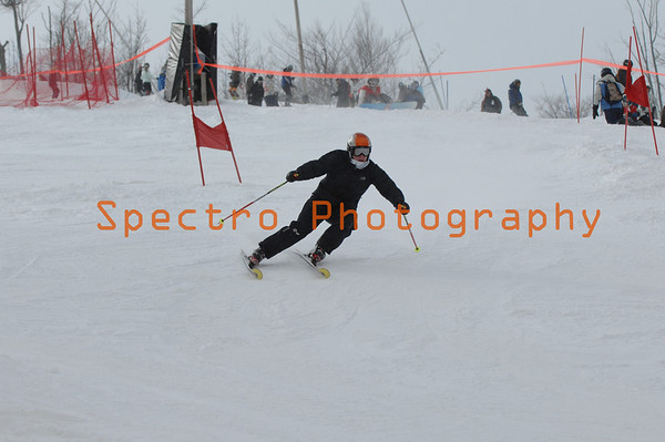 OFSAA Alpine Level I GS 2009