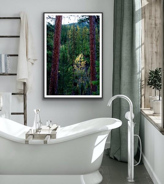 'Gateway' Fine Art Print Framed/Unframed