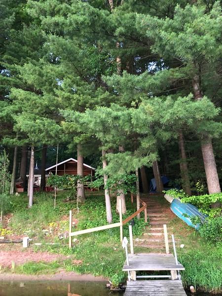 Cottage Solitude in June