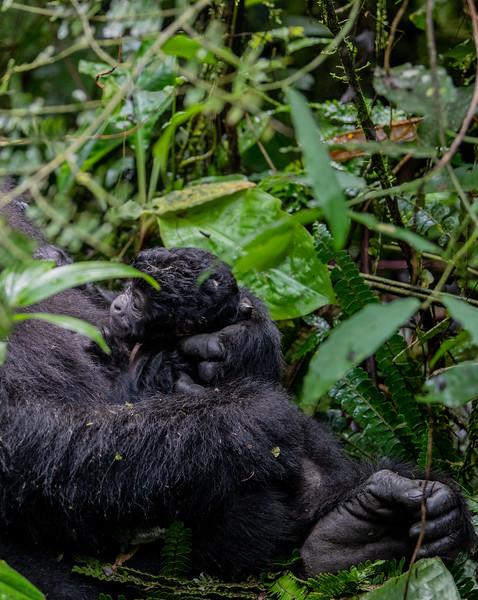 Uganda_T_Gor-25.jpg