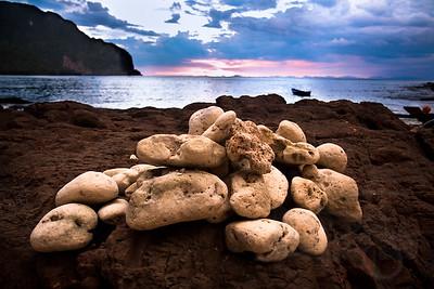 Sea sponges. Koh Phi Phi, Thailand.
