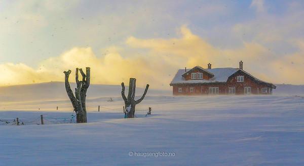 Sør Norge