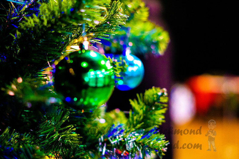 Richmond_Holiday_Festival_SFR_2019-488.jpg