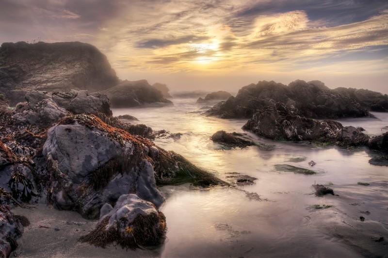 Shell Beach, Low Tide, Sea Ranch, California