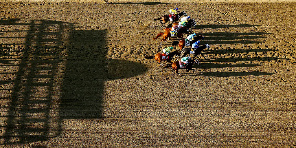 . The field leaves the starting gate at the begining of the 147th running of the Belmont Stakes at Belmont Park on June 6, 2015 in Elmont, New York.  (Photo by Al Bello/Getty Images)