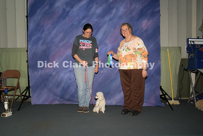 Sunday Obedience Award Photos