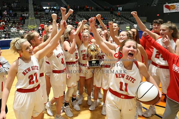 MHSAA State Basketball Finals