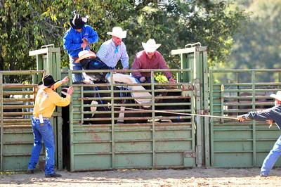 2009 LHSRA Rodeo (Baque Arena)