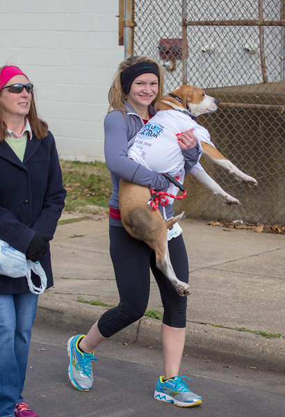 Richmond Spca Dog Jog 2018-595.jpg