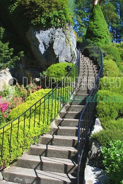 High Steps_batch_batch.jpg