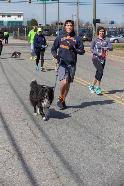 Richmond Spca Dog Jog 2018-685.jpg