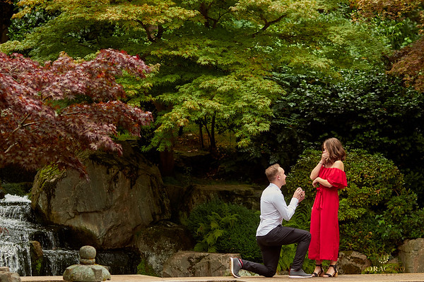Secret proposal in Kyoto Garden in London