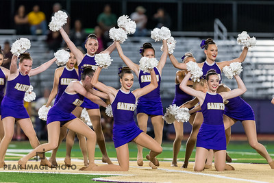 2015 Pom and Cheer