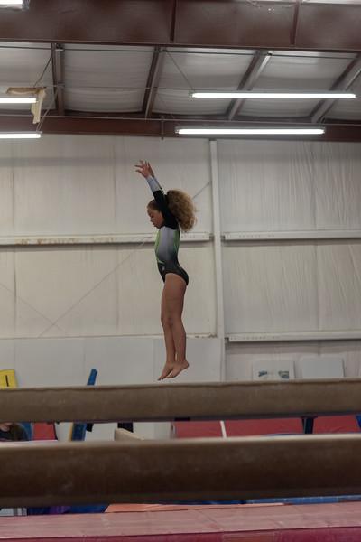 Brianna Gymnastics-0275.jpg