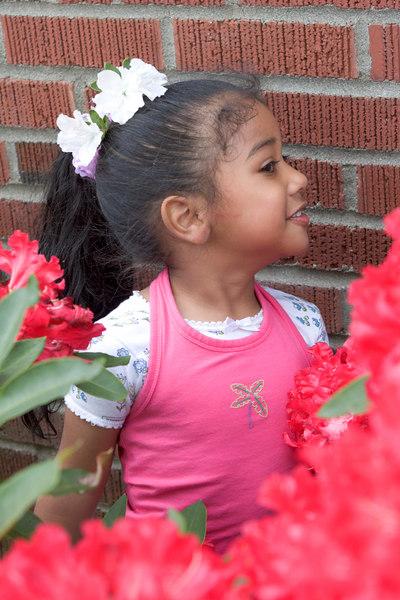 FV_Diana0101.jpg