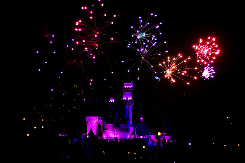 2010 - Jan - 18-24 - Family Disneyland Trip-9868