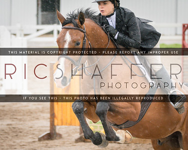 CJL/Snowbird USEF National Horse Show March 31 - April 3