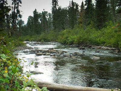 Wabakimi - Albany River 2011