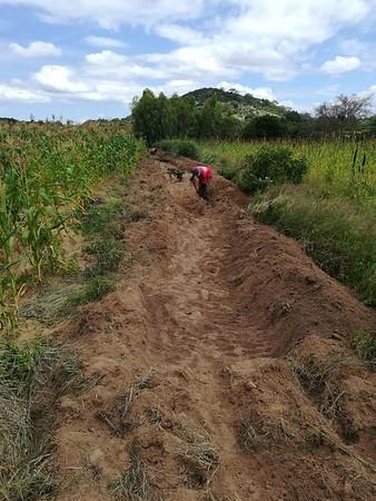 Buhera Lemba soil rehabilitation project