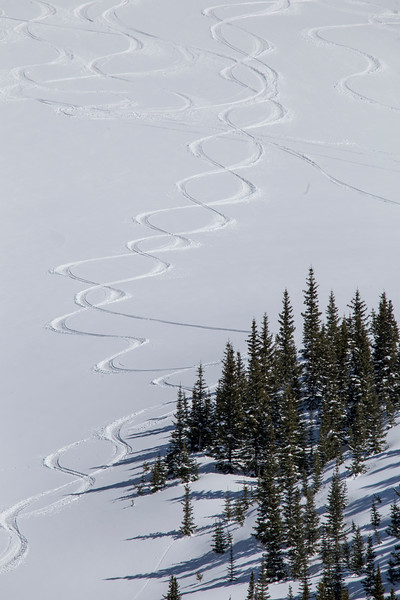 Tracks on Red Mountain