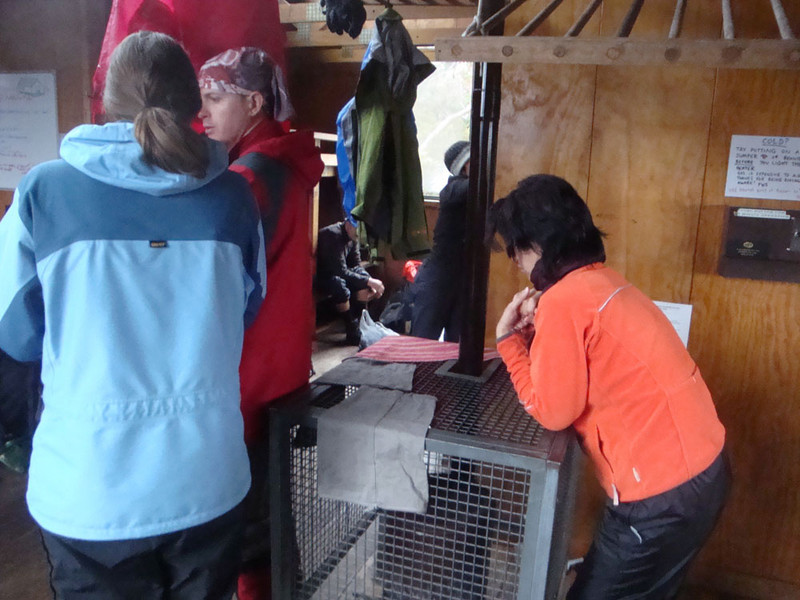 After trekking for hours through sleet and snow flurries, albeit through beautiful terrain, we finally arrived at the haven of Waterfall Valley Hut, to find Diana and others huddled around the hut stove.