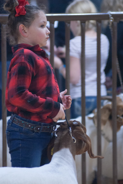kay_county_showdown_goats_20191207-108.jpg