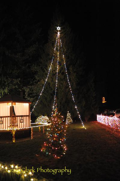 Aspen Meadows Celebration of Lights