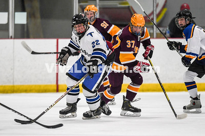 Ice Hockey: Broad Run vs Loudoun County / Tuscarora 1.11.2019 (by Mike Walgren)