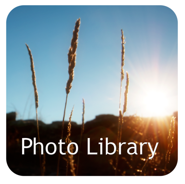 Photo-LIbrary-Cover-Page.png