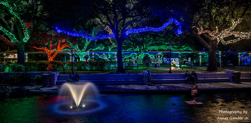 Houston-Zoo-Lights-2991.jpg