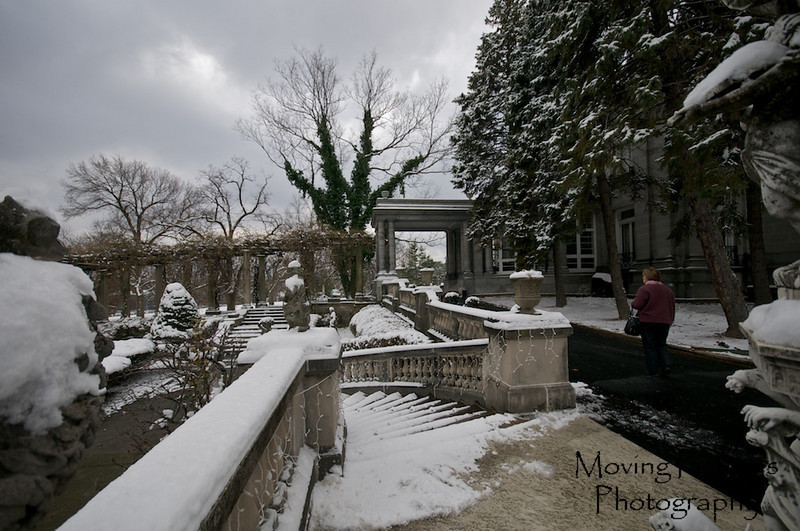 Laurel Court - south gardens under a blanket of fresh snow