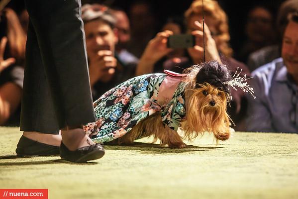 Haute Dog 2015