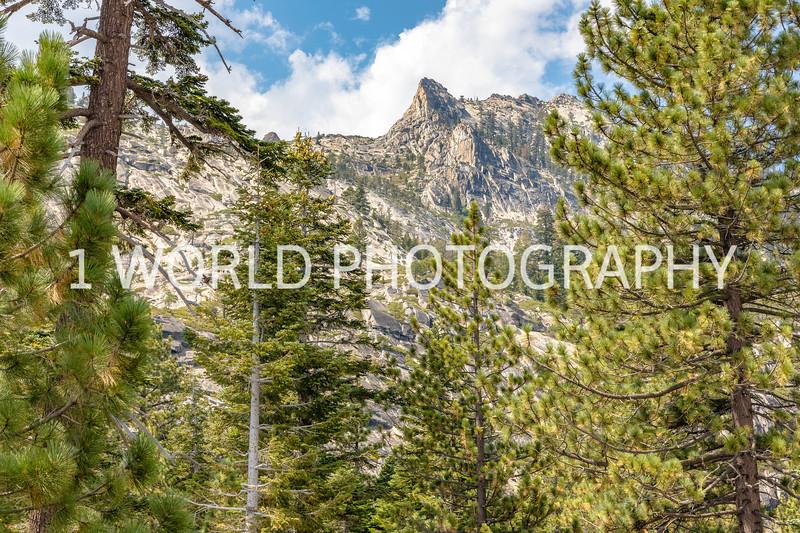 San Fran_Lake Tahoe Trip 2017-1334-72.jpg