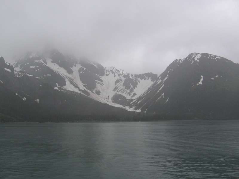 Beginning of Seward wildlife cruise