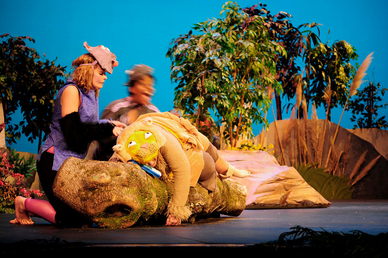 PHS Jungle Book 2008