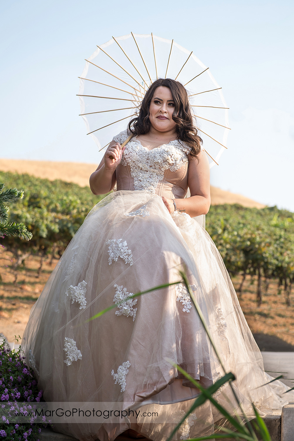bride with white umbrella walking down in the vineyard at Taber Ranch Vineyards