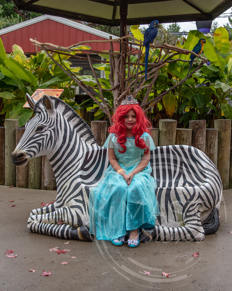2018 Boo at the Zoo_27.jpg