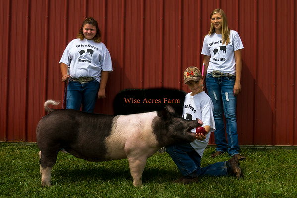 Wise Acres Farm Photos