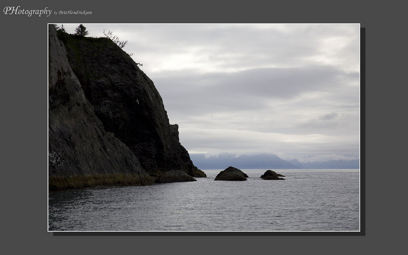 My Alaska 12-08-099.jpg