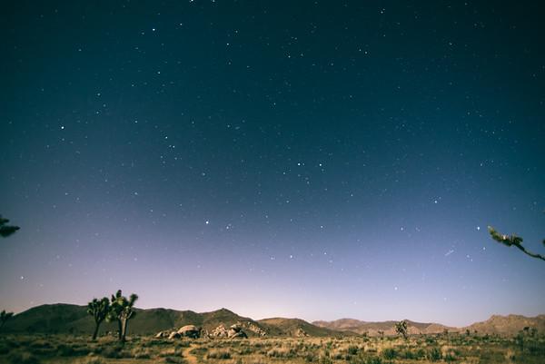Break in the Desert
