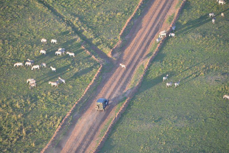 East Africa Safari 202.jpg