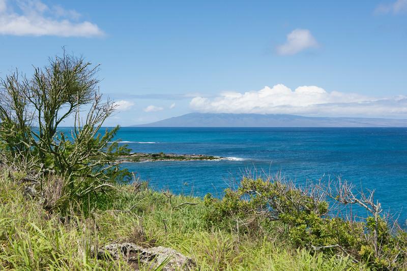 hawaii_0070.jpg
