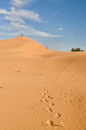 2 days in the desert