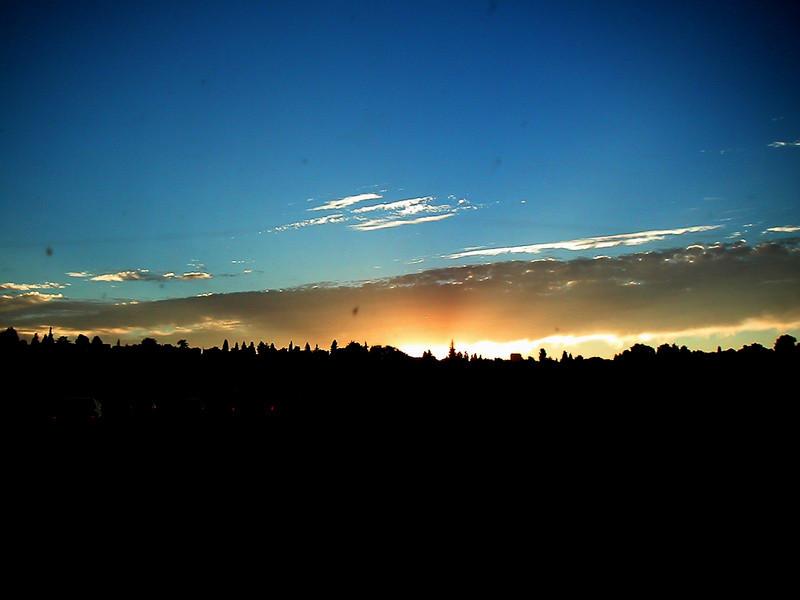 51 Seattle Silhouette.jpg